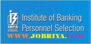 IBPS RRB Officer Scale 1 Cutoff Marks